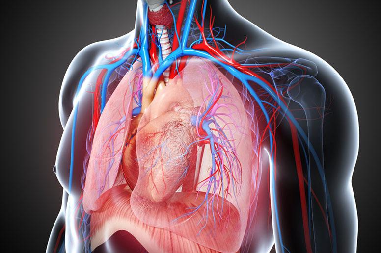Как определить нужна ли вам дыхательная гимнастика