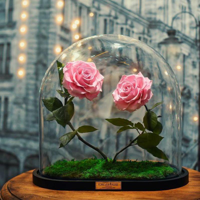 Я в садовника влюбилась… Какой цветок соответствует вашему женскому имени?